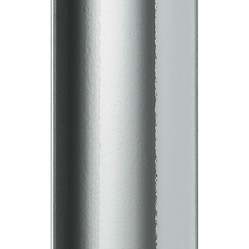 PR Profil M 60 Silver PF gloss